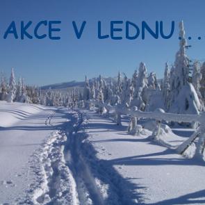 AKCE V LEDNU